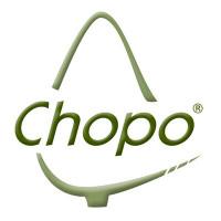 Logo de Artesania chopo