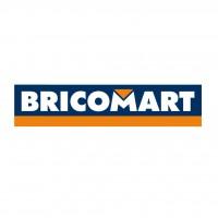 Logo de Bricomart