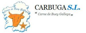 Logo de Carbuga