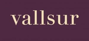 Logo de Centro Comercial Vallsur