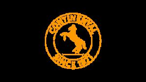 Logo de Continental automotive spain