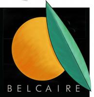 Logo de Exportaciones belcaire