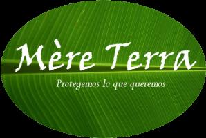 Logo de G.m.s.m medioambiente