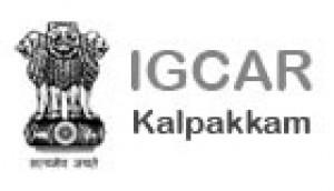 Logo de Igcar chemicals