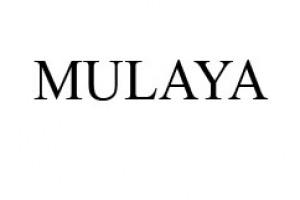 Logo de Mulaya