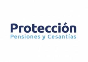 Logo de Proteccion castellana