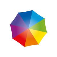 Logo de Quiauto